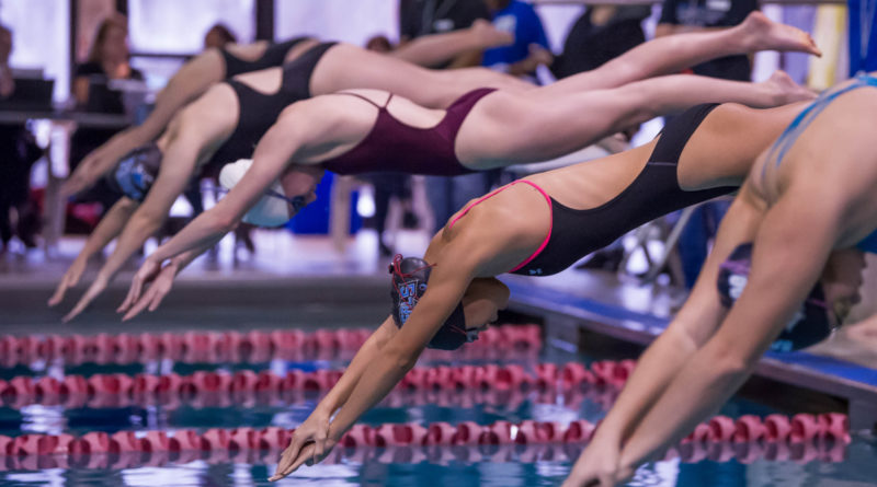 Sport Short: Swim and Dive Preview